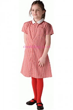 Gingham School Summer Dresses-SPECIAL OFFER PACKS - Click Image to Close