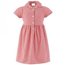 Classic Style Gingham Dress
