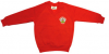 Crookston Castle Primary School V-neck Sweatshirt